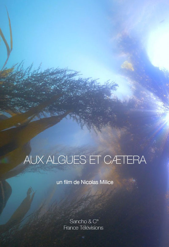 Aux Algues et caetera, documentaire de Nicolas Milice.